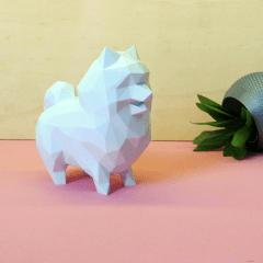 Spitz - Lulu da Pomerânia